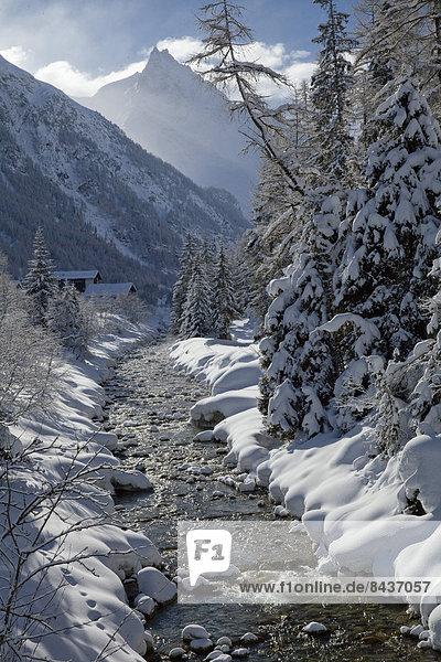 Landschaftlich schön landschaftlich reizvoll Wasser Europa Winter Baum Landschaft fließen Fluss Bach Schnee Schweiz Gewässer