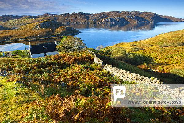 Steinmauer Europa Wohnhaus Großbritannien Küste Meer Herbst Schottland