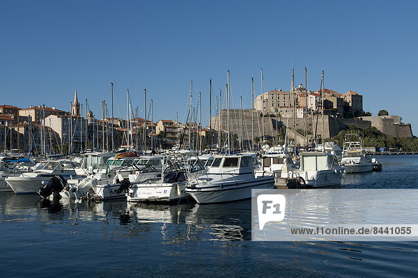 Hafen  Motorjacht  Frankreich  Europa  Boot  Altstadt  Festung  Calvi  Korsika