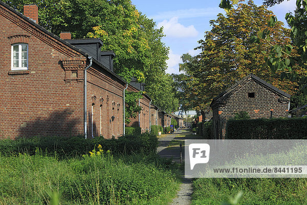 Germany  Oberhausen  Lower Rhine  Ruhr  area  Rhineland  North Rhine-Westphalia  Oberhausen Osterfeld  Eisenheim  working-class  settlement  industrial  culture  Berlin street  residential buildings  brick  building  stable  flies  residential path