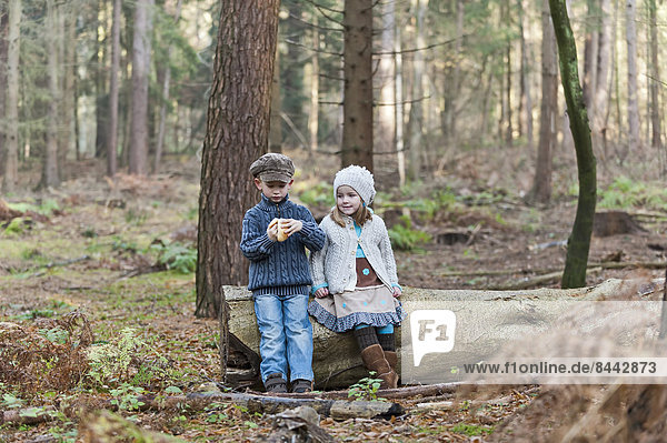 Germany  North Rhine-Westphalia  Moenchengladbach  Scene from fairy tale Hansel and Gretel  brother and sister eating bread in the woods