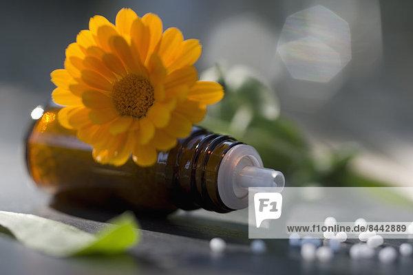 Pot Marigold  medicine bottle and globules