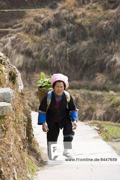 Frau  tragen  Korb  Gemüse  Dorf  China  Berg  Guilin