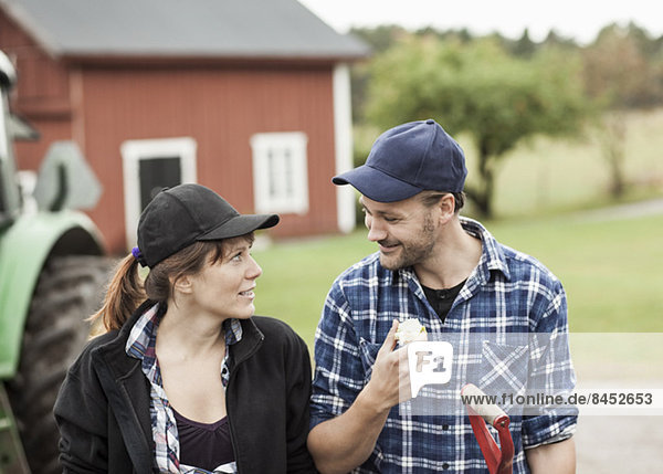 Mittleres erwachsenes Paar  das sich auf dem Bauernhof ansieht.