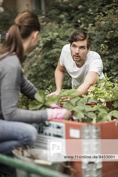 Freunde beim gemeinsamen Gärtnern im Freien