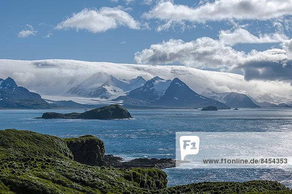 Die Bay of Isles an der Nord-Ost-Küste  Südgeorgien und die Südlichen Sandwichinseln  britisches Überseegebiet