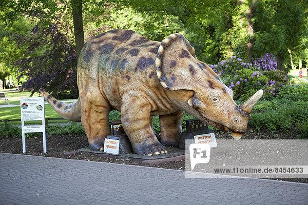 Model of a dinosaur  Steinhuder Meer Nature Park  Steinhude  Lower Saxony  Germany