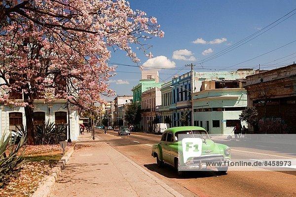 Havanna  Hauptstadt  Auto  Straße  amerikanisch  Mittelamerika  Kuba  alt