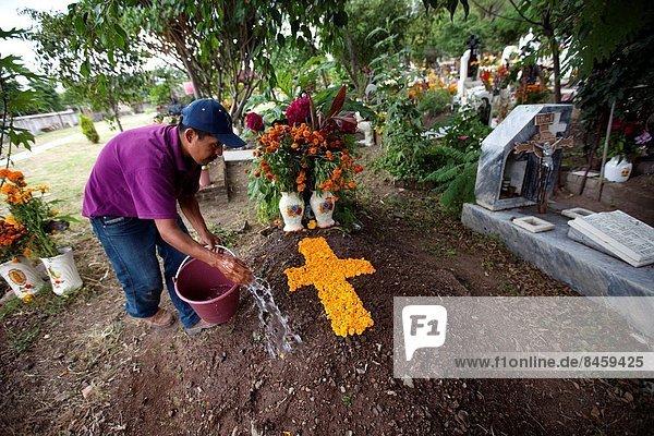 Ringelblume  Calendula officinalis  Wasser  überqueren  Mann  Tag  Blume  Fest  festlich  Tradition  ehrbar  Dekoration  Blütenblatt  Mexiko  Kreuz  Oaxaca  Grabmal  Valle