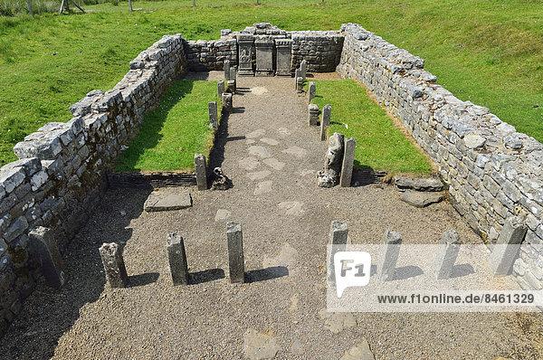 Der Mithrastempel aus dem 3. Jahrhundert  Hadrians Wall  Carrawburgh  Northumberland  England  Großbritannien