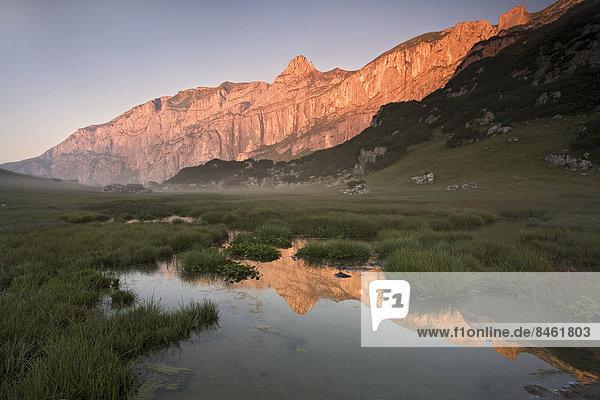 Die Felsen des Sagzahn und des Sonnwendjochs spiegeln sich in einem Hochmoor  Rofangebirge  Tirol  Österreich