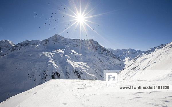 Vögel kreisen um die Sonne  Winterlandschaft im Pitztal  Taschachferner  Nordtirol  Österreich