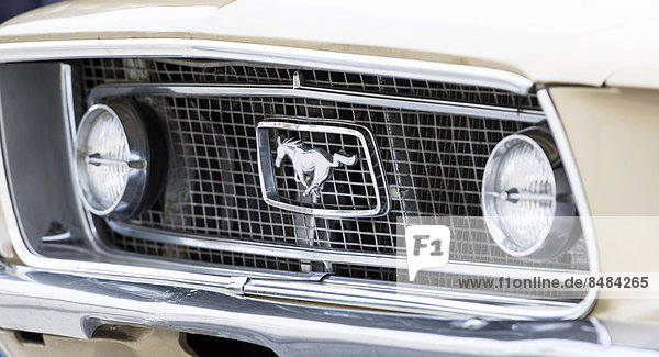 K¸hlergrill  Ford Mustang 302 GT von 1968