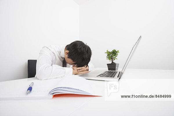 Schreibtisch  Notebook  Geschäftsmann  schlafen  Mittelpunkt  Erwachsener