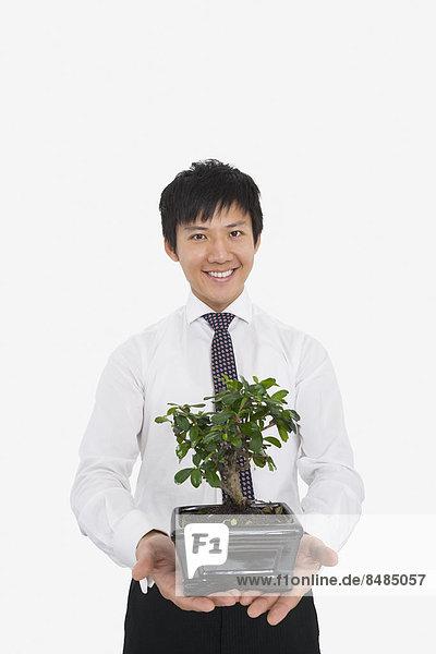 Portrait  Fröhlichkeit  Geschäftsmann  über  halten  weiß  Pflanze  Hintergrund  Mittelpunkt  Topfpflanze  Erwachsener