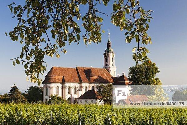 Europa  Kirche  Weinberg  Abtei  Birnau  Deutschland  Wallfahrt  Unteruhldingen
