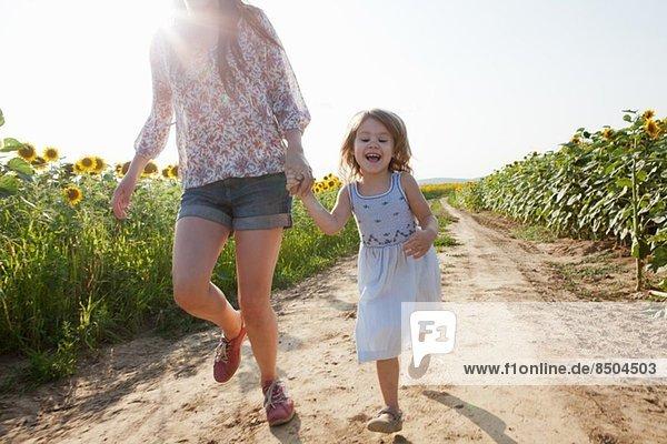 Mutter und Tochter laufen durch das Sonnenblumenfeld Mutter und Tochter laufen durch das Sonnenblumenfeld