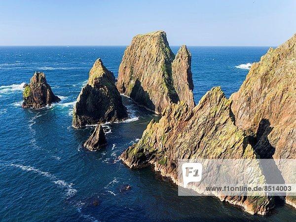 zwischen  inmitten  mitten  Europa  Großbritannien  Steilküste  Shetlandinseln  Mai  Schottland
