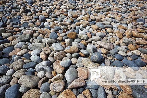 Frankreich  Bretagne  Plougrescant  Kieselsteine am Strand