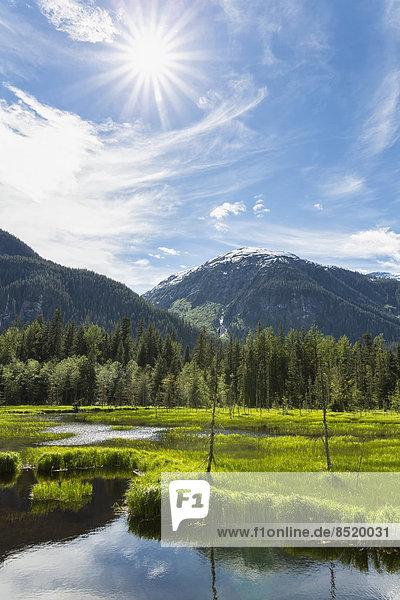 USA  Alaska  Hyder  Stewart  Rißer landscape at Fish Creek