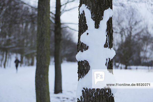 Rabbit made of snow at tree trunk