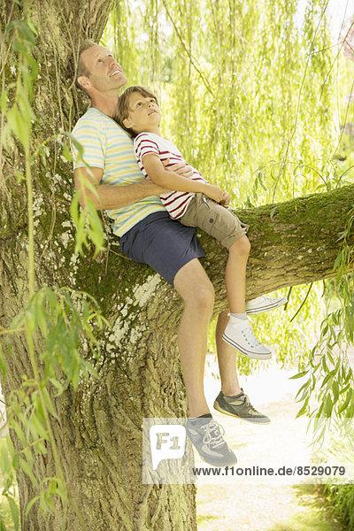 Vater und Sohn entspannen sich im Baum