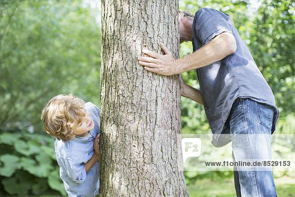 Vater und Sohn schauen um den Baum herum