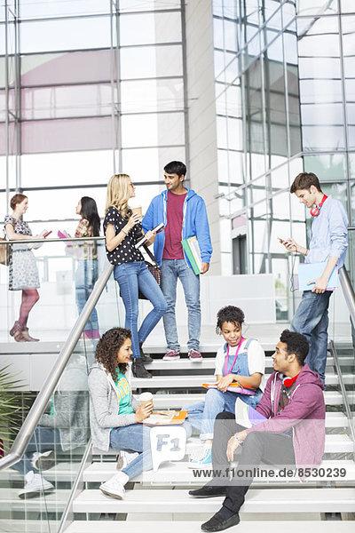Universitätsstudenten im Gespräch über Stufen