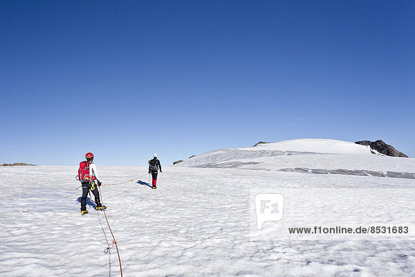 Bergsteiger auf dem Gepatschferner  hinten die Weißseespitze  Südtirol  Italien