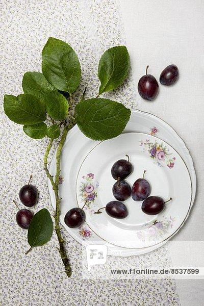 Pflaumen mit Zweig und alten Tellern auf Tuch