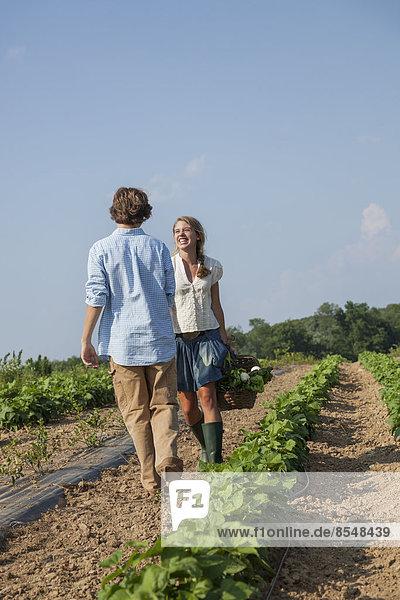 führen  Junge - Person  Gemüse  Produktion  Wachstum  Pflanze  Feld  Mädchen