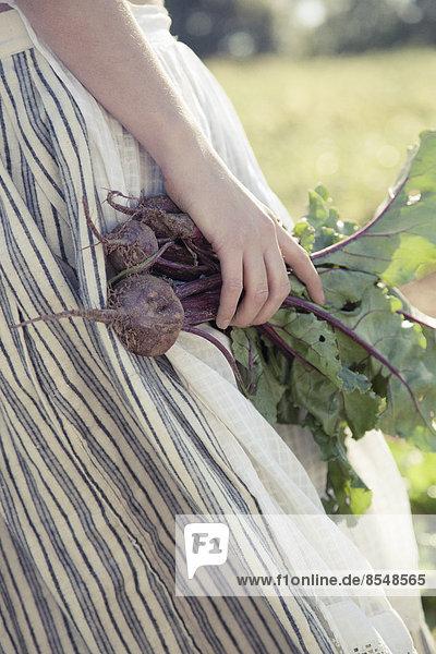 Ein Mädchen im gestreiften Rock erntet Rüben  frisches Gemüse von einem Getreidefeld.