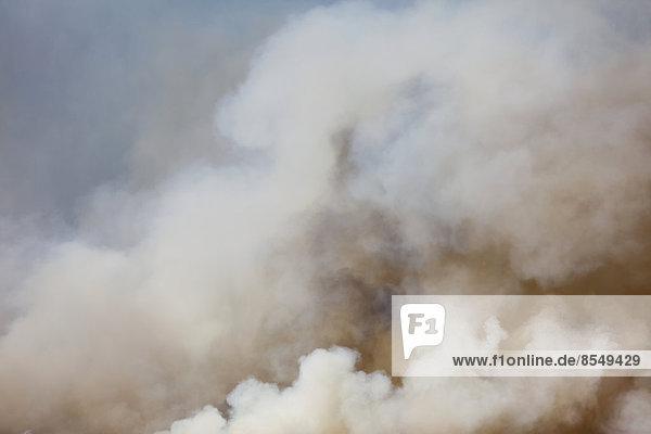 Ein großer Waldbrand in der Nähe von Ellensburg im Bezirk Kittitas  Bundesstaat Washington  USA.