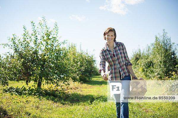 Eine Frau in einem karierten Hemd  die im Obstgarten eines Bio-Obstbaubetriebs Äpfel pflückt und einen Weidenkorb trägt.
