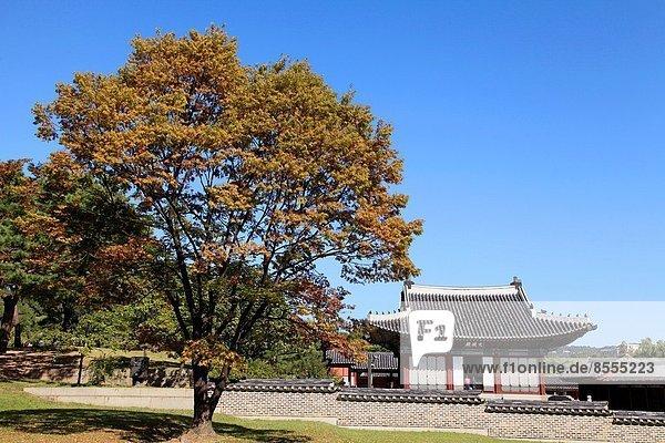 Seoul  Hauptstadt  Südkorea