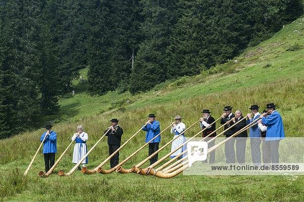 Alphornbläsergruppe auf einer Wiese im Justistal  Beatenberg  Berner Oberland  Schweiz