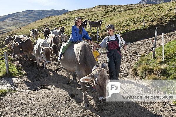 Mädchen  8 Jahre  reitet auf einer Kuh  während sie mit ihrer Mutter die Kühe von der Alp in den Stall bringt  Alp Gün  Safiental  Graubünden  Schweiz