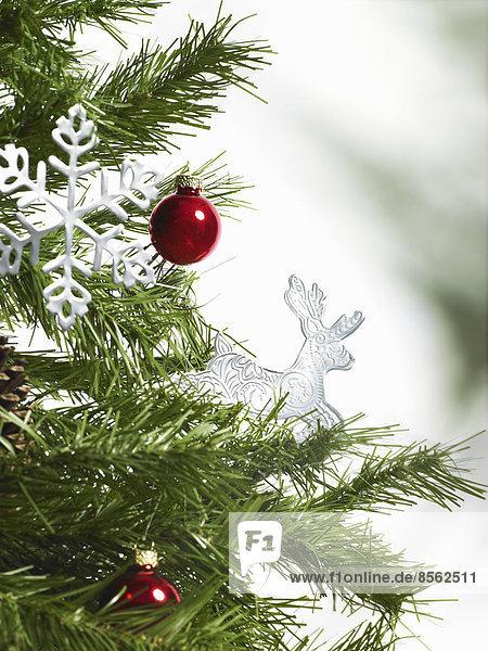 Stilleben. Grünes Blattwerk und Dekorationen. Ein Kiefernzweig mit grünen Nadeln. Weihnachtsschmuck. Zwei rote Kugeln und zwei eiszapfenförmige Ornamente.