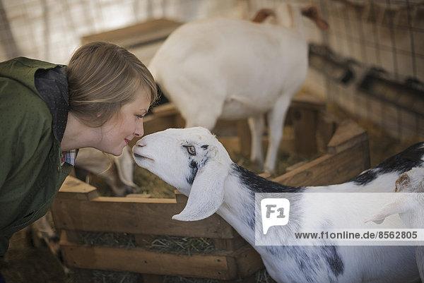 Eine Frau in einem Stall auf einem Biohof. Weiße und schwarze Ziegen.