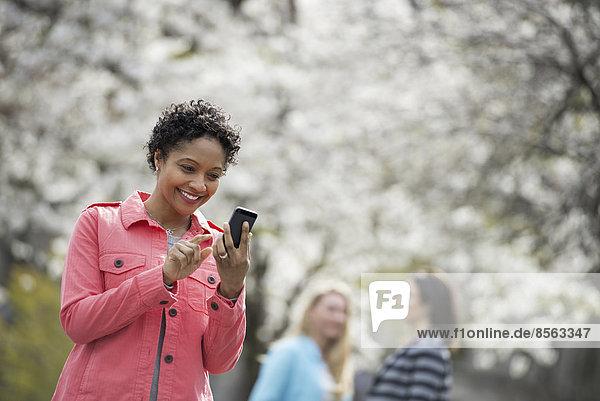 Menschen im Frühling in der Stadt im Freien. Weiße Blüte an den Bäumen. Eine junge Frau  die ihr Handy überprüft und lacht.