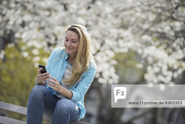 Draußen in der Stadt im Frühling. Park von New York City. Weiße Blüte an den Bäumen. Eine Frau sitzt auf einer Bank und hält ihr Mobiltelefon.