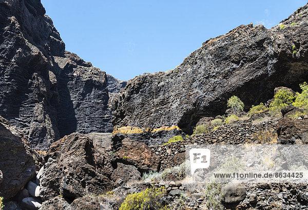 Klippe in der Masca-Schlucht  Vulkangestein  Teneriffa  Kanarische Inseln  Spanien