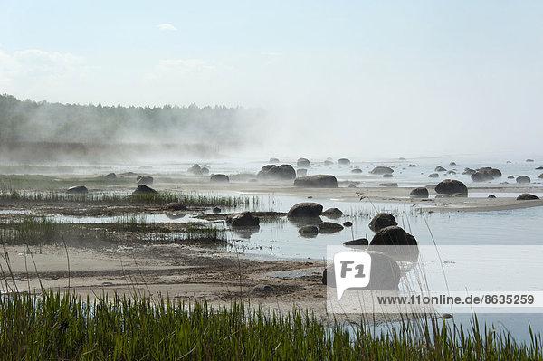Felsbrocken Dunst Meer Baltikum Estland