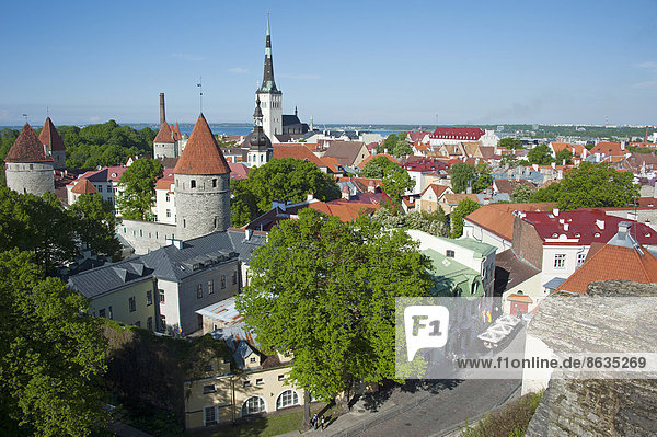 Ausblick vom Domberg auf die Unterstadt  Altstadt  Tallinn  Estland  Baltikum