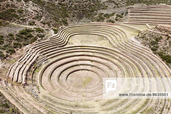 Inka-Terrassen  Landwirtschaft  in Moray  bei Ollantaytambo  Heiliges Tal  Peru