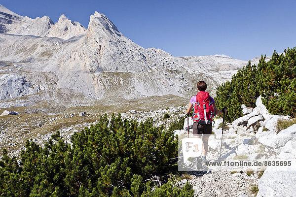 Mountain climber ascending Piz de Lavarela Mountain in the Fanes Group in Fanes-Sennes-Prags Nature Park  with Lavarella Saddle at the rear  Val Badia  Dolomites  Alto Adige  Italy