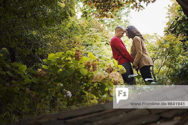 Szenen aus dem städtischen Leben in New York City. Ein Park mit Bäumen. Ein Mann und eine Frau  ein Paar  das Händchen hält.