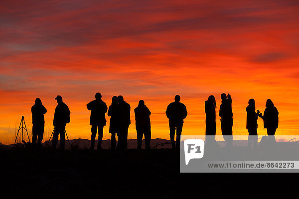 Photographers at sunset  Skagit Flats  Washington
