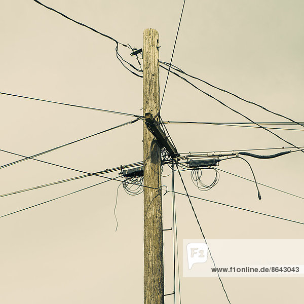 Telefonmast und Stromleitungen  Seattle