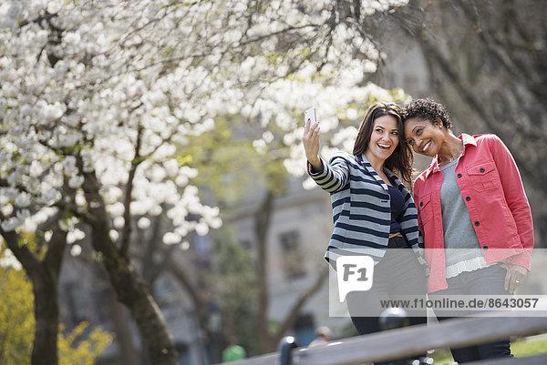 Menschen im Frühling in der Stadt im Freien. Der New Yorker Stadtpark. Eine junge Frau hält ein Telefon in die Hand  um ein Foto von sich und einem Begleiter zu machen.